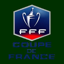 Hasil gambar untuk logo coupe de france png